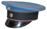 Mütze #220