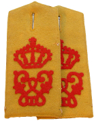 Schulterstücke Ulanen-Regiment König Wilhelm I (2. Württembergisches) Nr.20 #183