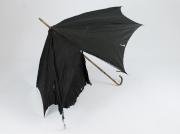 Schirm  #1263